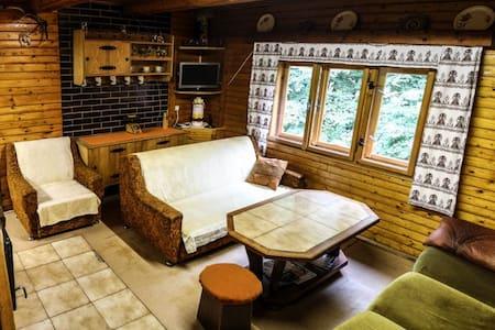 Chata v príjemnom tichom prostredí - Belá - Hut