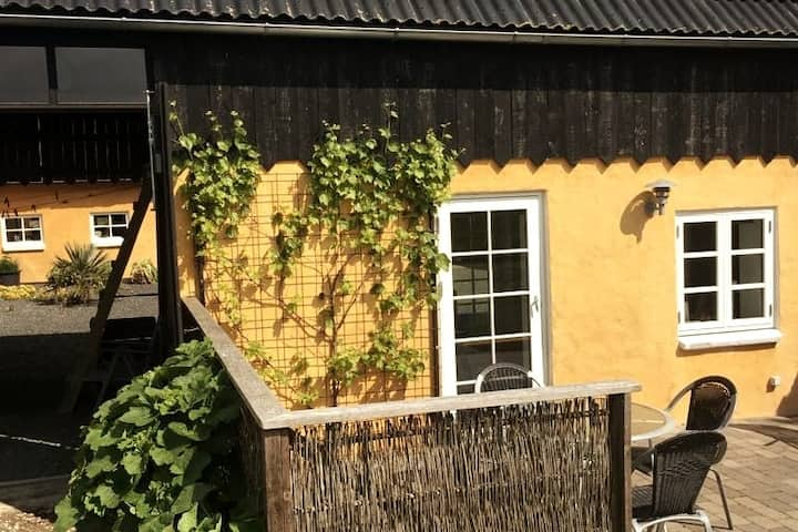 Hygge og idyl imellem markerne på Samsø