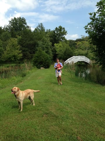 The Firnew pond, complete with our very own Giverny Bridge and farm dog, Cooper.