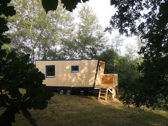Tiny house Under the Tree Oaks - Kolinec - Other