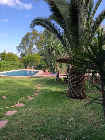 Charmante villa au milieu des oliviers