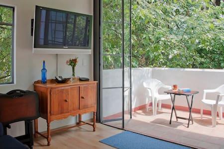 NEW Lovely Studio w/ leafy terrace - Ciudad de México