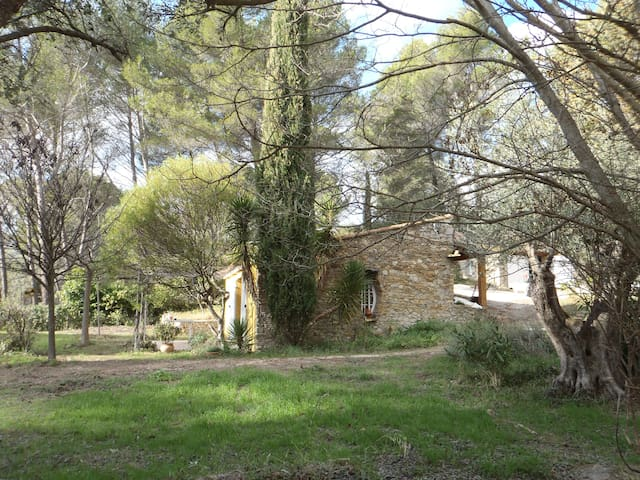 Independant house in the Provence nature near sea