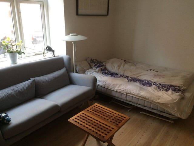 Cosy apartment i the center of Aarhus - Aarhus - Appartement