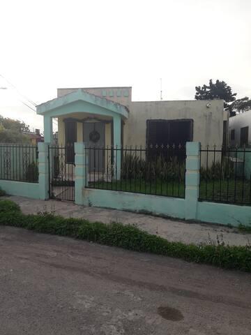 The New Birdhouse...🦆