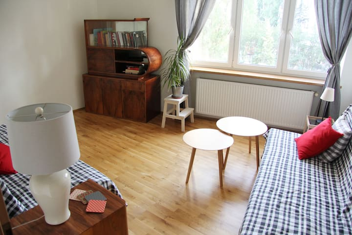 Lovely, Spacious, 2 Bedroom Apartment in Old Town