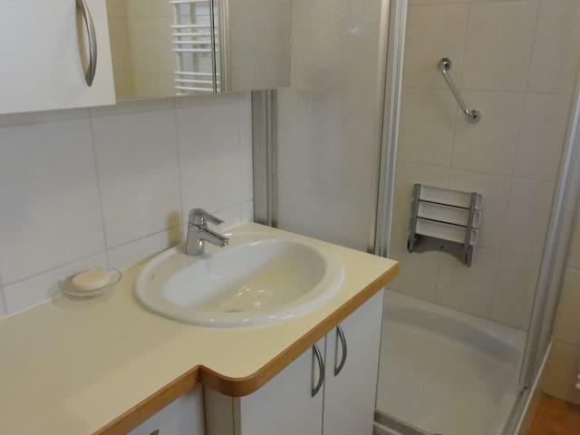 Das Waschbecken und die Dusche