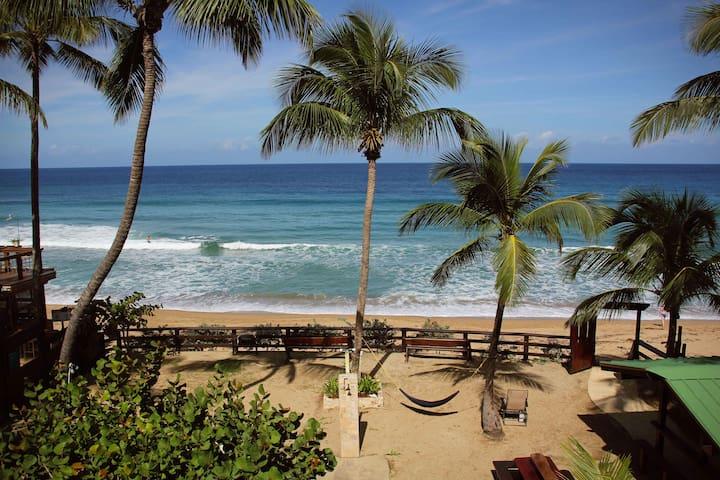 """BEACHFRONT  on famous surf beach  Sandy Beach """"A"""""""