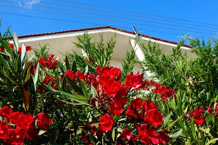 Chill out Bed & Breakfast Guesthouse - Psakoudia