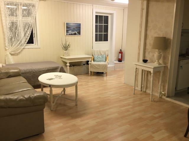 Sentral leilighet - Sandefjord - Appartement