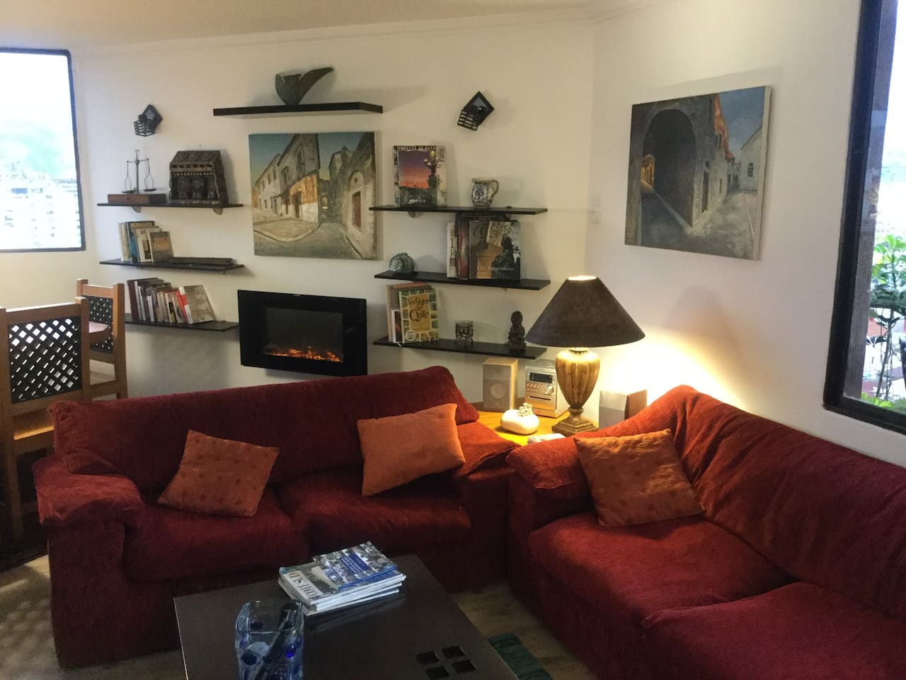 Living with electric fire place