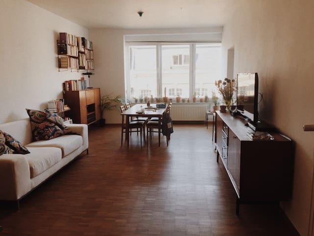 Spacious & light apartment Antwerp