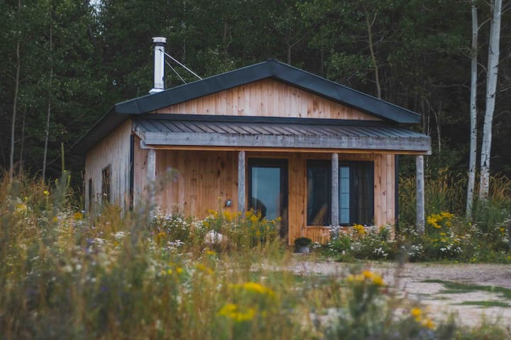 Little Algonquin - A tiny home in Northern Ontario