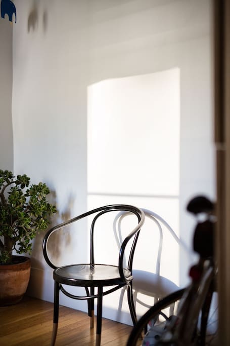 Bentwood chair and afternoon light