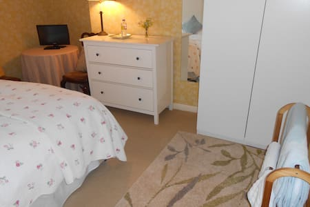 Lovely room close to the centre of London - London - Apartment