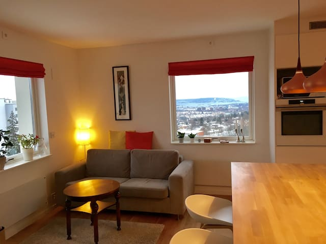 Fantastic view, next to metro and the forest. - Oslo - Apartment