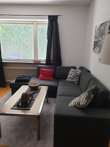 Central Gothenburg apartment near Liseberg