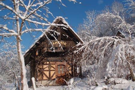 Gîte de l'Ânerie - Kirchberg - Rumah tumpangan alam semula jadi
