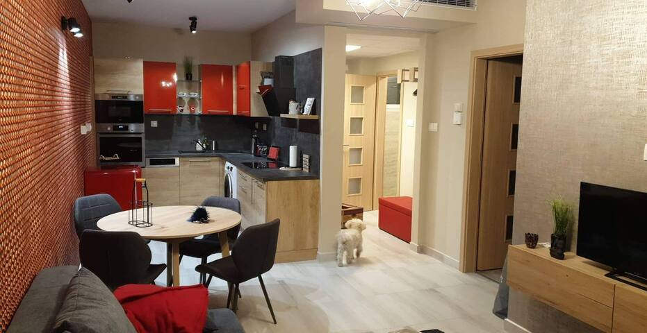 Cozy modern-Central  apartman PU III.