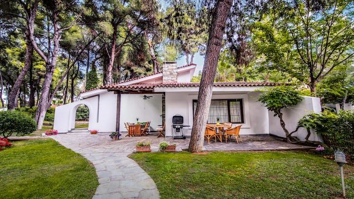 Beautiful Holiday Villa in Sani
