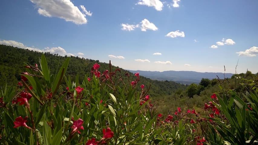 Casa Lama, tre camere vista panoramica e giardino - Castelfranco di sopra - Huis