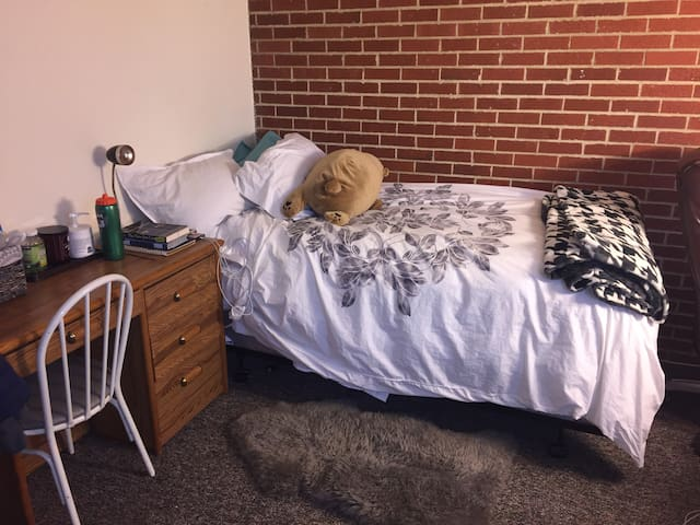 SPACIOUS & SUNNY apt for spring/summer sublease