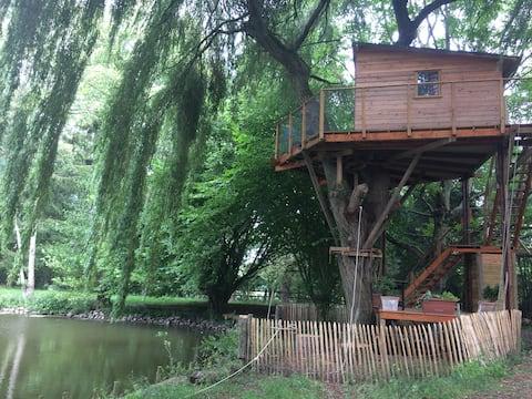 Cabane perchée au-dessus d'un étang !