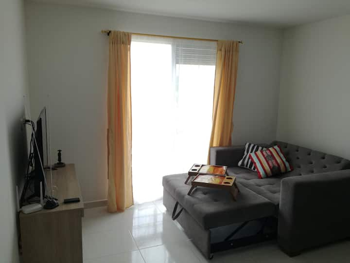 Cozy and convenient apartment near airport