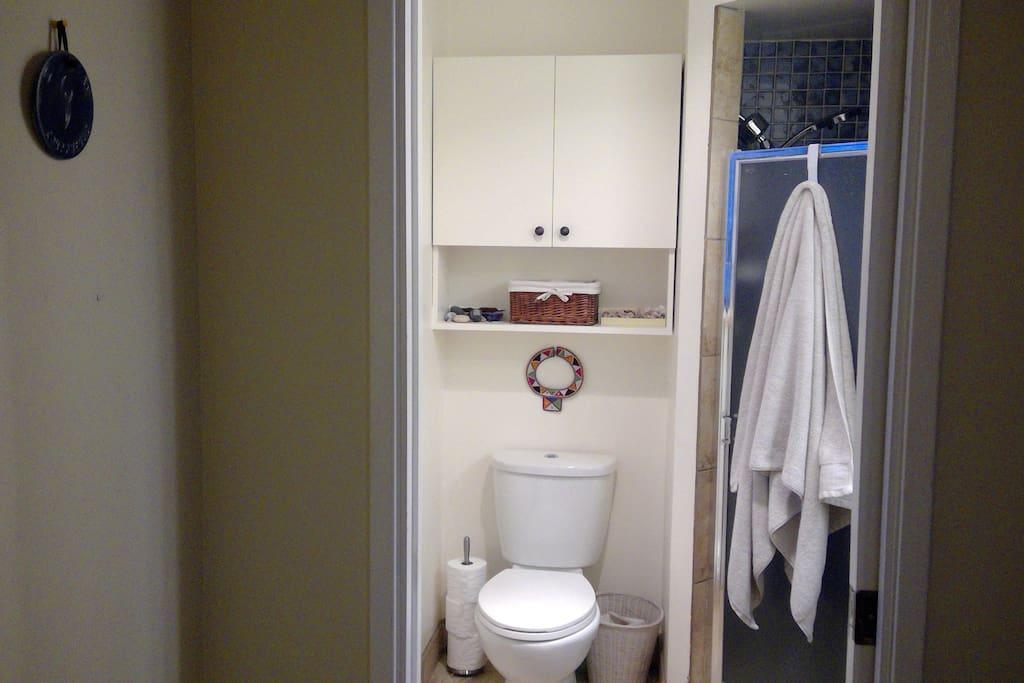 Ensuite shower, sink, toilet, hair dryer, iron+board