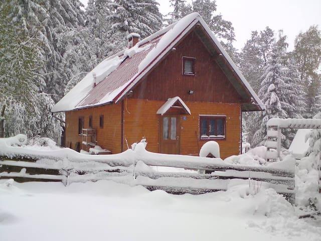 Domek przy parku - Karpacz - Bungalow