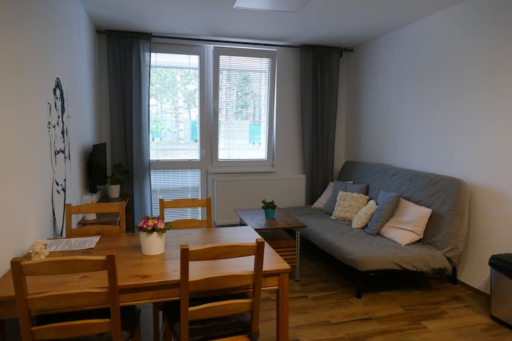 Apartment Rezidence La-2A