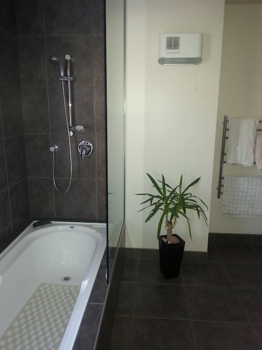 This is the guest bathroom with combined bath/shower
