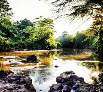 Mara Safari Banda 5