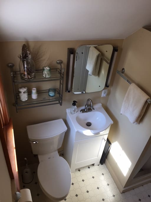 Private bathroom with toilet, sink and shower