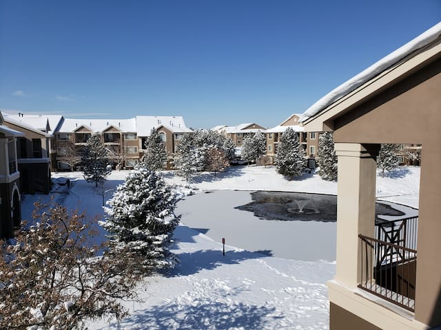 Cozy 1 BD Apt 3rd floor overlooking pond/fountain