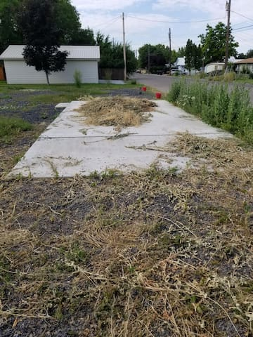 Concrete pad, weeds will be removed soon