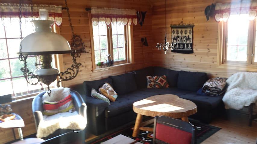 Komfortabel sofa i stua