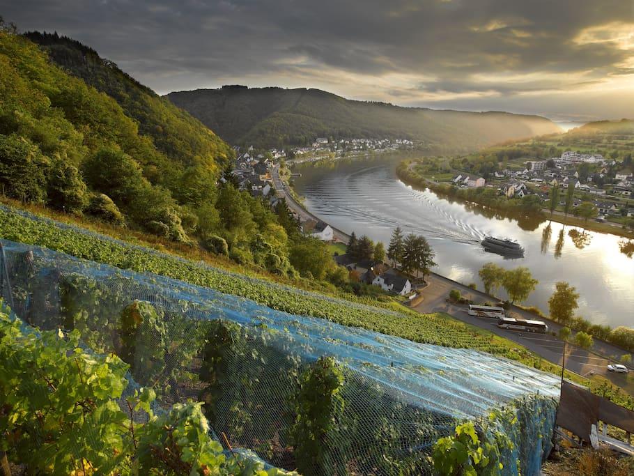 Brodenbach // Foto: Foto-Obersteiner, Brodenbach