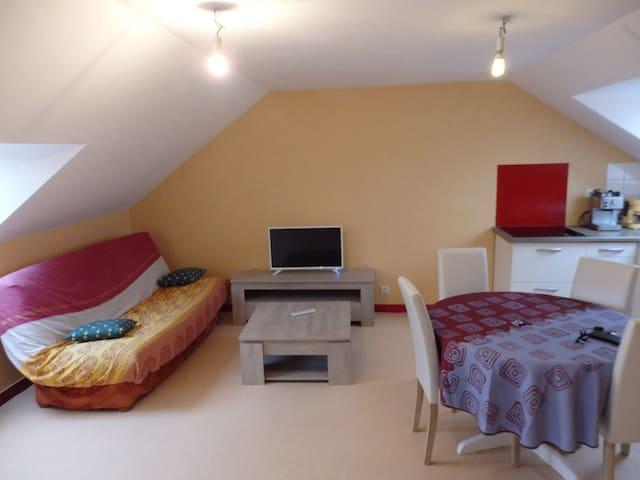 Appartement 2 pièces au coeur de la Bretagne - Saint-Jouan-de-l'Isle - Leilighet
