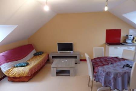 Appartement 2 pièces au coeur de la Bretagne - Saint-Jouan-de-l'Isle - 公寓