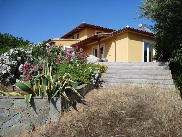 U SOLE SI CIOTTA - Propriano - Villa