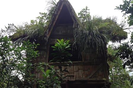 MUYU  Forest in Mindo  cabin - Mindo
