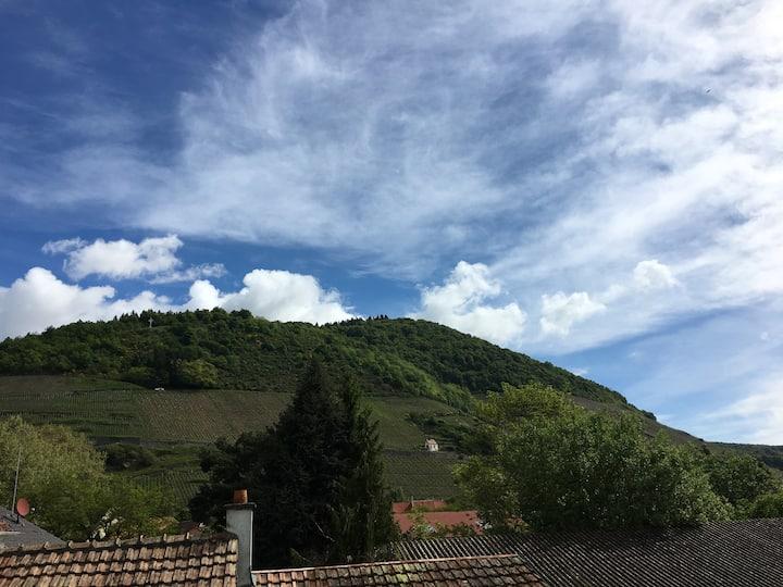 Appart. centre ville, terrasse vue sur le vignoble