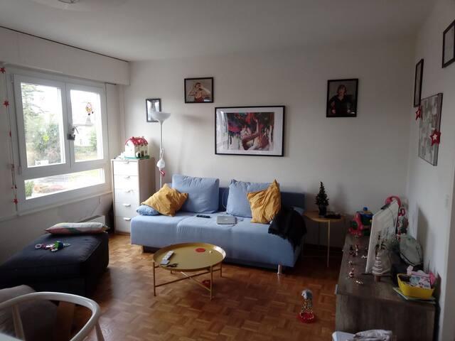 appartement a morges vue et localisation ideale