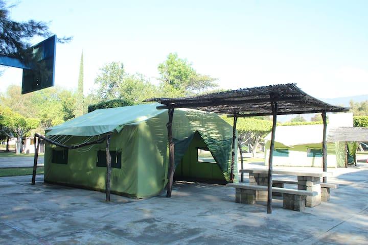 Tienda de Acampar Ecológica