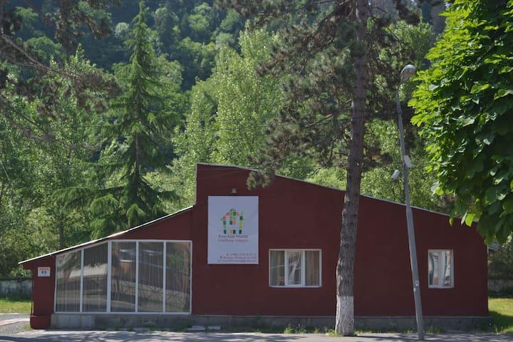 RiverSide Hostel Borjomi Shared Room