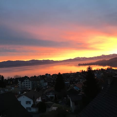 Amazing view over the lake of Zurich - Richterswil - Wohnung