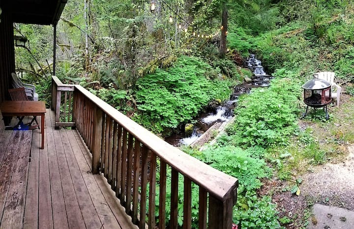 Creek Runs UNDER Our Cabin. Dog Ok