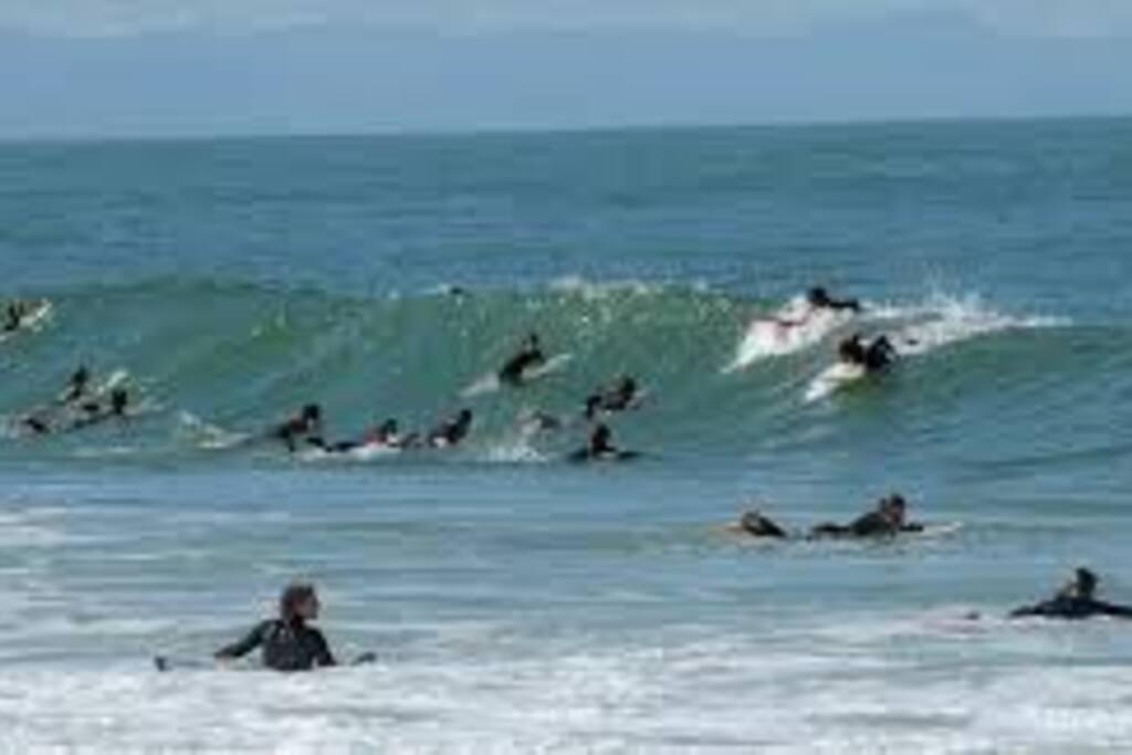Capbreton surf