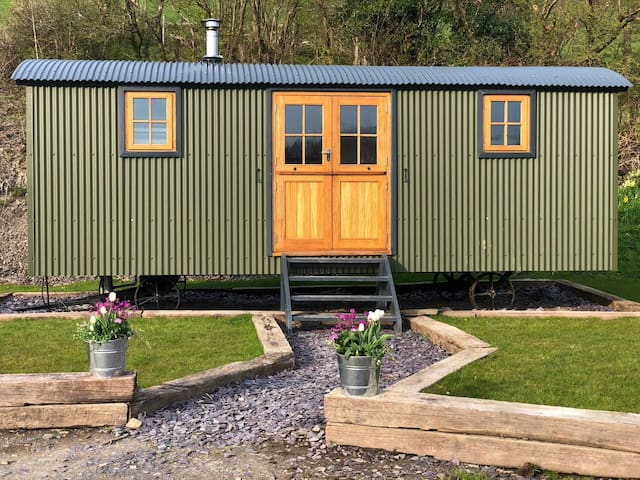 Shepherd's hut near Aberystwyth on small holding